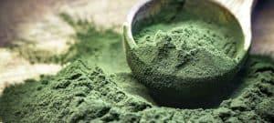 Green chlorella spirulina algae powder